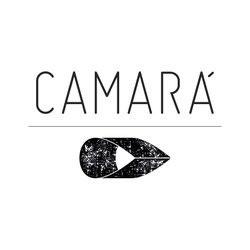 camara_designbr