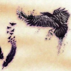 raven2099
