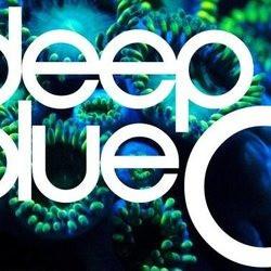deepbluec