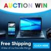 auctionwin