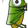 grasshopperaggy