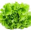leafygreenfarms