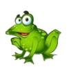 studiofrog