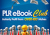 give You 85 Top Quality PLR Ebooks That Cover Almost Every Niche