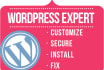 create and Customize WordPress website
