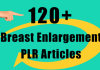 send you over 120 Breast Enlargement PLR articles for your website