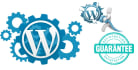 customize WordPress theme, Plugins and error fixs