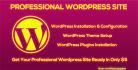 install WordPress and setup professional website