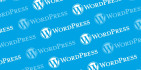 create a wordpress professional full website