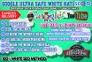 make Googe ultra safe white hat seo service
