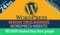 remove Wordpress Virus and Bugs