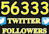 add 56,333 real looking twitter followers to your account in less than 24 hours