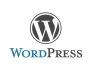 design a wordpress template