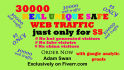 give 30000 unique safe true web traffic with in 3 days