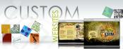 create a Custom Web Site