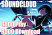 6000 Real SOUNDCLOUD Play and 8000 Download send for 5 Dollars