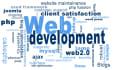 any type of web development