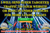 send SUPER Targeted Traffic to your site or blog in under 24Hrs