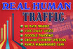 drive Unlimited Real Google Organic Traffic for 30 Days