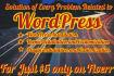 install any WordPress theme, plugin or widget