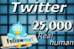 give you 25000 followers on your twitter