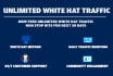 dripfeed UNLIMITED WhiteHat Traffic during 30 days