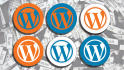 install and setup WordPress on your web host