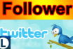 add 30,000 followers and can split to 8 link