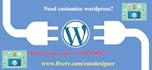 create and maintain WordPress website