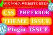 do WordPress plugin, theme customization and fix site