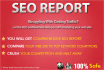 give you full website audit report up to 50 pages
