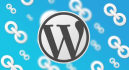 remove OUTBOUND links from your Wordpress Template