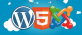 customize WordPress and Joomla site