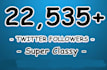 add 22,535 Permanent Twitter Followers To Your Account