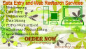 do data entry and  web research for 3 hours