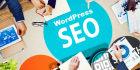 do Complete Wordpress SEO for better ranking