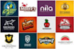 design a PROFEsSIONAL logo within 24 hrs