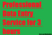 be Your Fiverr Data Entry Operator For 3 Hours
