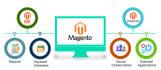 design and develop magento website