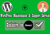 provide WordPress maintenance and support on monthly fees basis