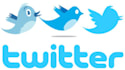 give you 4000 plus twitter followers