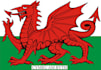 translate any text from English into Welsh 1DAY