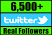 add 6,500 Twitter followers to your profile