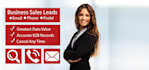 give all types Business Leads and Contacts