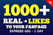 add 1000 REAL facebook likes to your fanpage