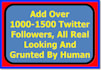 add Over 1000 To 1500 Twitter Followers, All Real Looking And Grunted By Human
