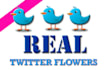 add 1000 UK real twitter followers within 3 days