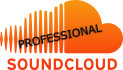 give you 30 permanent SOUNDCLOUD Comments in 1 day and 1500 plays