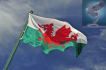 translate from English to Welsh or vice versa into text or voice