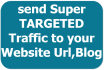 send Super TARGETED Traffic to your Website Url,Blog to